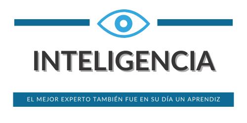 Formación en Análisis de Inteligencia